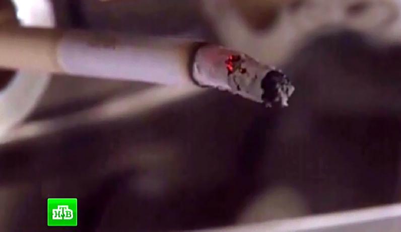 Շոկային տեսանյութ, որը ցնցել է ողջ աշխարհը. ահա, թե իրականում ինչից են պատրաստում ծխախոտը. միայն ամուր նյարդեր ունեցողների համար