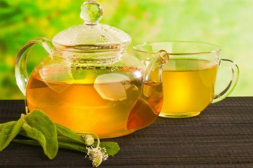 Антихолестириновый чай из подорожника