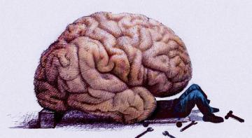 6 способов регенерировать клетки мозга и улучшить его функциональность!Возраст не имеет значения!
