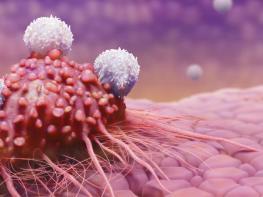 Рак, умирает, когда вы едите эти 7 продуктов Начните их употреблять