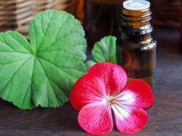 Эфирное масло Герани для здоровья и красоты