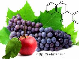 Флавоноиды: группа растительных веществ, продлевающих жизнь
