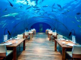 Աշխարհի լավագույն 10 ռեստորանները