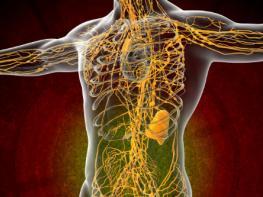 10 простых шагов для очищения лимфатической системы