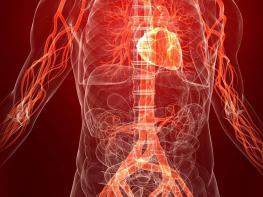 Այս պարզ միջոցը մաքրում է անոթները և կարգավորում է արյան ճնշումը
