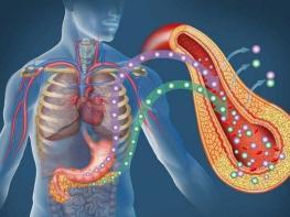 Методы коррекции инсулина