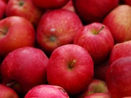 Պետք է օրական գոնե մեկ հատ խնձոր ուտեք․ Ահա այդ զարմանահրաշ պատճառը