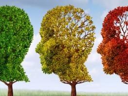 Թեստ. արդյոք Ալցհեյմերի հիվանդությունը սպառնու՞մ է ձեզ