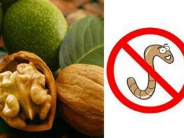 8 продуктов, которые естественным образом уничтожают паразитов в организме