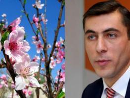Ինչպիսի եղանակ է սպասվում Հայաստանում ապրիլ ամսին