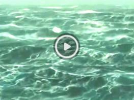 Տեսանյութ, որը մի քանի օրում գրավեց ողջ համացանցը. դիտեք ամբողջական էկրանով