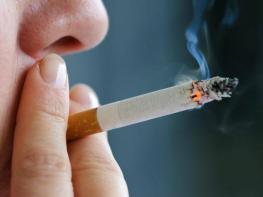 Ճապոնացի գիտնականները ծխախոտի մասին հայտնել են այն, ինչի մասին չէիք էլ կարող գլխի ընկնել